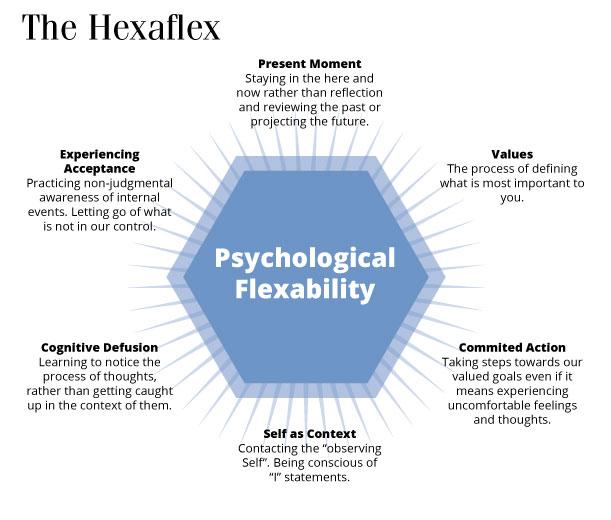 Hexaflex diagram