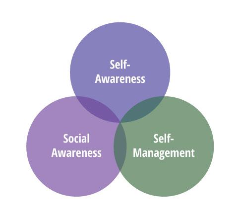 diagram self-awareness, Social Awareness, Self-management